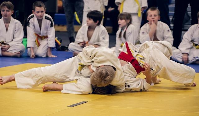 judo 4454835 640